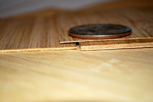 Micro-laminated & Silver Dollar